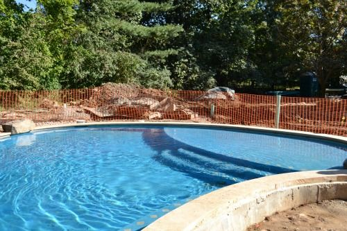 Swimming pool construction company for Swimming pool construction company
