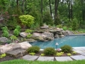 Natural Setting Pools Inground Design