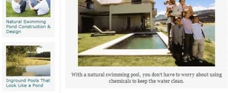 How to design a natural swimming pool online publication feature